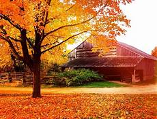 Rustic Country Fall Backgrounds fall autumn leaves colorful barn rustic country