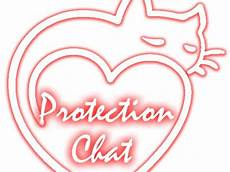 Protection Chat Solutions De S 233 Curit 233 Pour Les Chats
