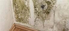 nettoyer les moisissures sur un mur truc et astuce