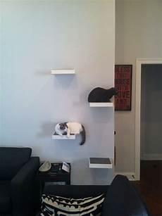 image result for cat wall shelves ikea floating shelves