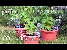pflanzen während urlaub bewässern gewusst wie 9 bew 228 sserung im urlaub mit pet flaschen