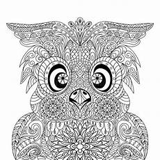 owl portrait mandala zentangle stock illustration