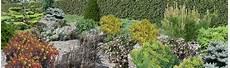 arbustes nains pour rocaille rocailles au jardin avec des conif 232 res nains