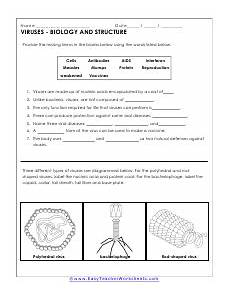 science bacteria worksheets 12135 bacteria and viruses worksheets science worksheets bacteria lesson teaching biology
