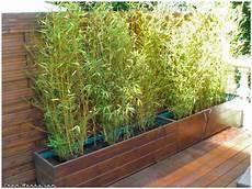 grande jardinière pour bambou bacs 224 bambous am 233 nagement ext 233 rieur jardiniere bambou