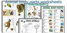 animal parts worksheets esl 14296 pin on quizes