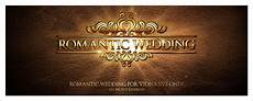 after effects project files wedding videohive