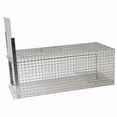 gabbia trappola gabbia trappola cattura animali da cortile cm81x36