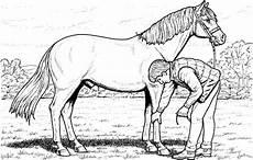 Ausmalbilder Pferde Schleich Schleich Pferde Ausmalbilder Zum Ausdrucken