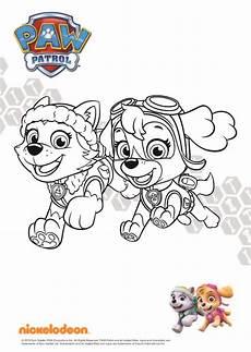 Paw Patrol Nickelodeon Malvorlagen Paw Patrol Ausmalbilder Und Everest Ausmalbilder