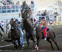 Indian Relays Think Horse Racing With Pit Stops  Sports