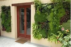 Support Mural Plantes Exterieur