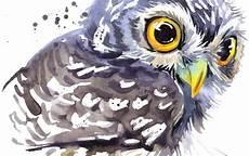Paling Bagus 28 Gambar Burung Hantu Yang Comel Richa Gambar