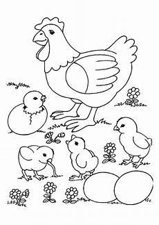 Malvorlagen Osterhase Jung Malvorlage Einer Mutter Henne Mit K 252 Ken Die Gerade
