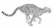 Kostenlose Malvorlage Gepard Ausmalbilder Gepard Ausmalbilder Ausmalen