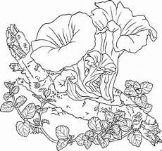 Ausmalbilder Erwachsene Blumen Kostenlos Ausmalbilder Pflanzen Kostenlos Malvorlagen Blumen