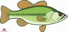 Fishing Image Clipart