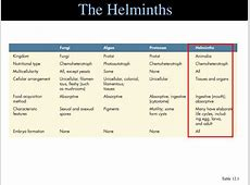are helminths eukaryotic or prokaryotic,the characteristic of helminths,vectors for helminths