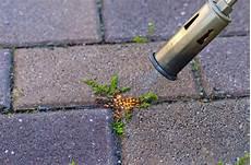 Fr 252 H Starten Unkraut Einfach Und Umweltschonend