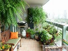 Balkon Ideen Pflanzen - saucy edible balcony late summer tomatoes