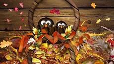 High Resolution Thanksgiving Wallpaper Background