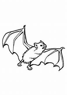 Fledermaus Ausmalbild Pdf Ausmalbilder Fledermaus Spreizt Fl 252 Gel Flederm 228 Use