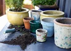 vasi colorati per piante perch 232 scegliere vasi grandi scelta dei vasi i vasi grandi