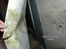 Verdeckter Schimmelpilzbefall Niemeyer Sachverst 228 Ndigenb 252 Ro