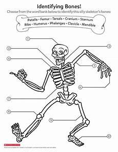 science worksheets human skeleton 12216 learning about bones worksheets printables scholastic parents