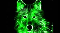 cool green wolf wallpaper quot an amazing neon green wolf on a black background quot posters
