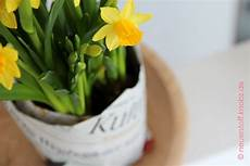 blumentopf selber basteln kultur pflanze blumentopf aus papier diy