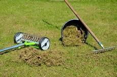 Moos Im Rasen Was Hilft Ursachen