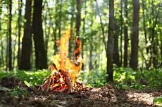 the forest feuerstelle consejos para sofocar el fuego de una hoguera herfer