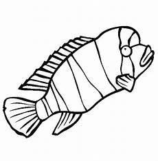 Gambar Kartun Ikan Hitam Putih Keren Bestkartun