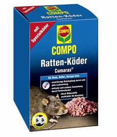 tote ratte entsorgen rattenbek 228 mpfung 3 wichtige tipps