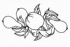 Malvorlagen Herbst Obst Malvorlagen Herbst Obst X13 Ein Bild Zeichnen