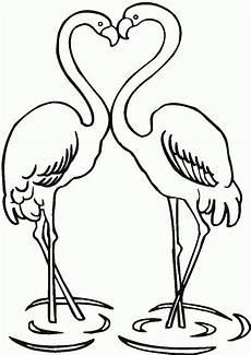 desenhos de flamingos para colorir
