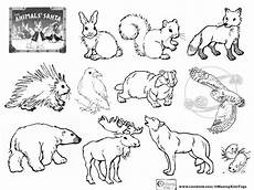 free printable coloring pages hibernating animals 17014 image result for how do animals survive the winter worksheet animal coloring pages santa