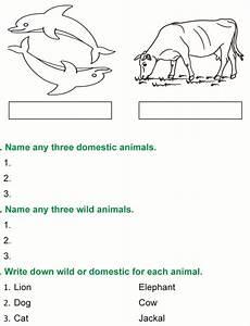 animal kingdom worksheet for grade 1 14255 grade 1 science lesson 3 the animal kingdom primary science