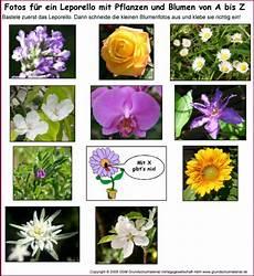 blumen a bis z leporello blumen und pflanzen a bis z fotos