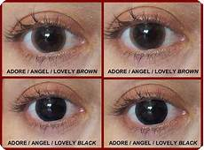 softlens living color adore lovely dnuth softlens center