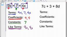 algebra coefficient worksheets 8358 coefficients constants terms and like terms vocab review