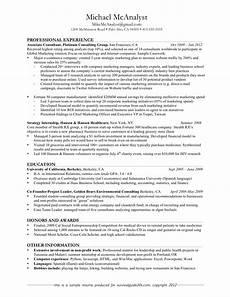 good resume exles professional experience slebusinessresume com slebusinessresume com