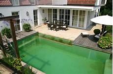 Schwimmteich Oder Pool - schwimmteich pool alternative ohne chlor