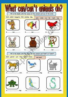 can animals do worksheets 13837 what can can 180 t animals do esl worksheet by cuneiform