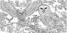 animorphia owls coloring page free coloring pages