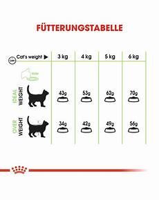 royal canin digestive care trockenfutter f 252 r katzen mit