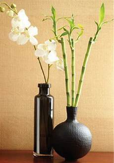 Zen Home Decor Ideas by Diy Tips To Create A Relaxing Zen Space In Your Home