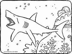 Malvorlagen Hai Hai Im Wasser Kiddimalseite