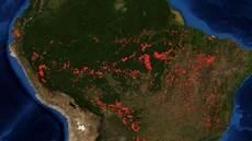 Kebakaran Hutan Mengancam Paru Paru Dunia Suara